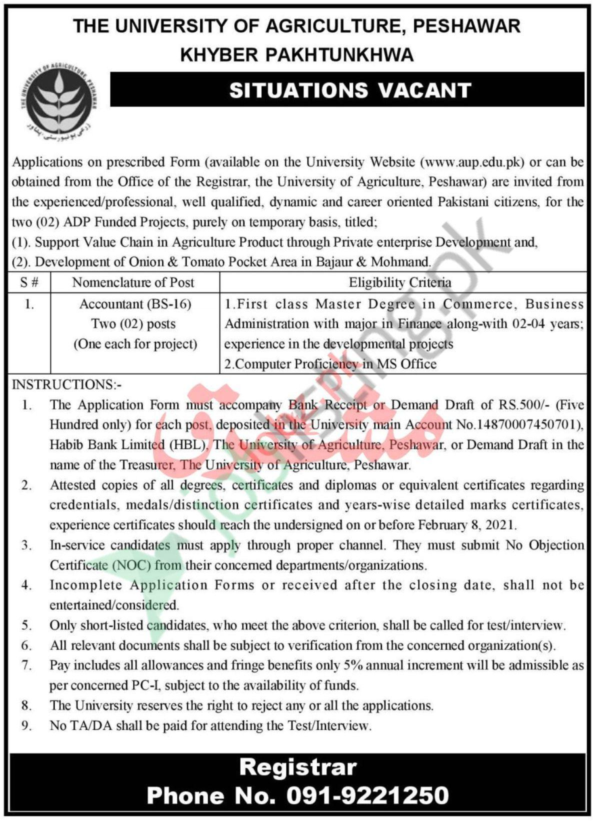 The University of Agriculture Peshawar Jobs 2021 Accountant